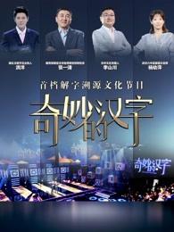 奇妙的汉字第五季