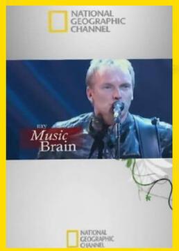 我的音乐大脑剧照