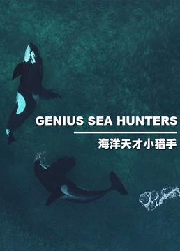 海洋天才小猎手剧照