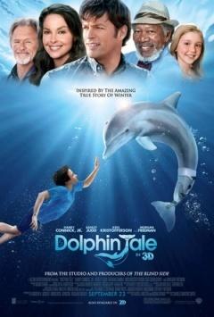 海豚的故事剧照