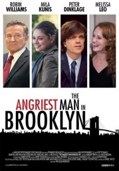 布鲁克林最愤怒的人剧照