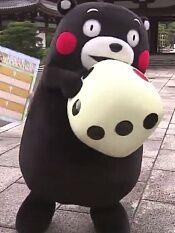 与熊本熊的熊本相遇之旅