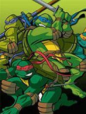 忍者神龟第三季
